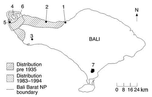balen-balistarling-2000-fig1